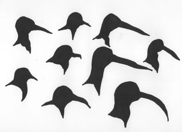 birdsfive